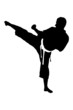 A silhouette of a karate man exercising