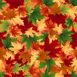 Seamless background of autumnal leaves