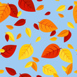Seamless pattern with colored autumn leaves. Vector illustration
