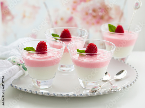 Raspberry yogurt dessert