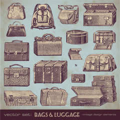 vector set: bags and luggage