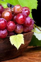 uva rossa - still life