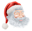 Christmas Santa Claus Face