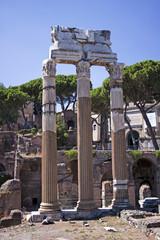 Ancient Roman Temple Columns.