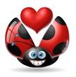coccinella cuore