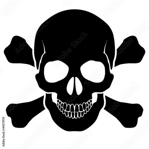Skull and bones - 44579178