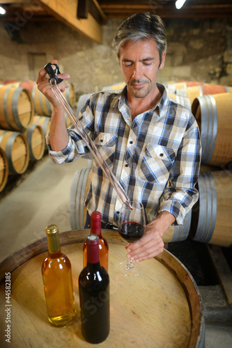 Winemakers in cellar using electronic tablet
