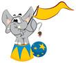Trained elephant