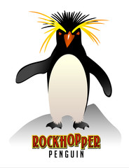 Rockhopper Penguin illustration