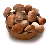 cep mushrooms in a basket