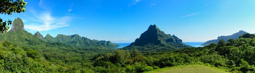 Tropical Moorea panorama