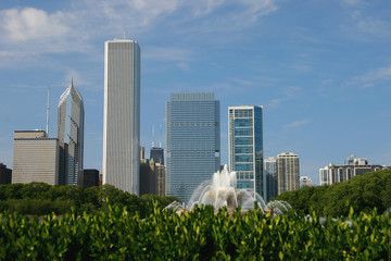 Chicago's Buckingham Fountain in Summer