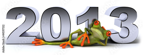Frog and 2013