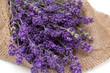 lavender on burlap
