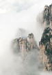 Cloudscape image of  Huangshan and pine tree like avatar