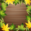 Green leaves with wood background, vector illustration