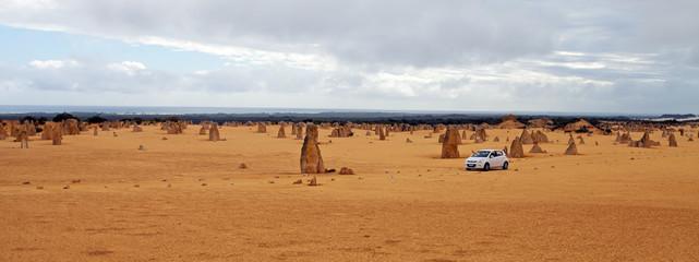 Deserto dei Pinnacoli, Pinnacles Desert, Australia