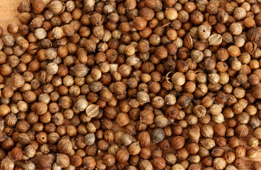 Heap coriander seeds close-up
