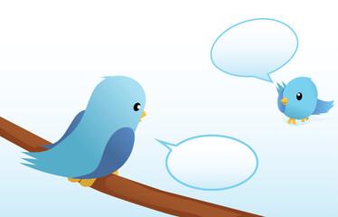 talking blue birds