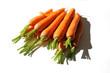 11 Karotten