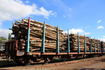 Transporting Wood on Railcars