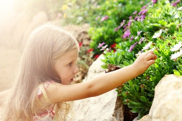 A little girl picks a flower