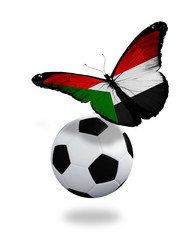 Concept - butterfly with Sudanese flag flying near the ball, lik