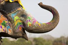 "Постер, картина, фотообои ""Decorated elephant at the elephant festival in Jaipur"""
