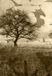 Grunge tree landscape
