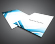 abstract business corporate brochure wave vector