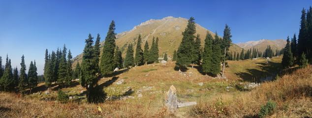 Beautiful panorama of the mountains