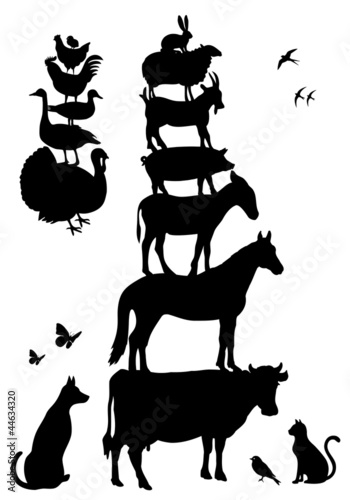 farm animals, vector set