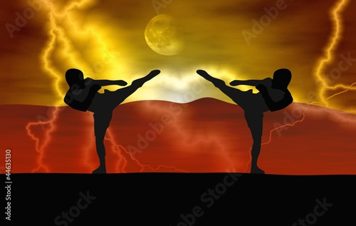 Silhouette illustration - Martial art