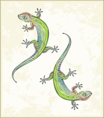 Illustration lizard. Greeting card with two gecko.