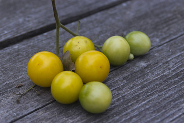 Yellow tomatoes on the table