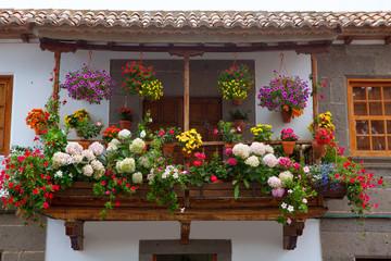 Gran Canaria Teror flower pot balcony