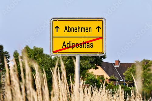 abnehmen adipositas