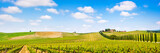 Fototapety Tuscany landscape panorama with vineyard, Chianti region, Italy