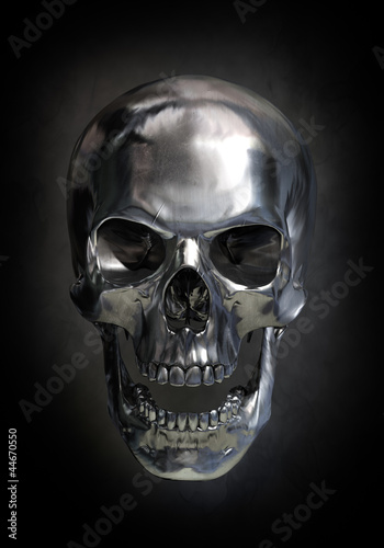canvas print picture Metallic skull