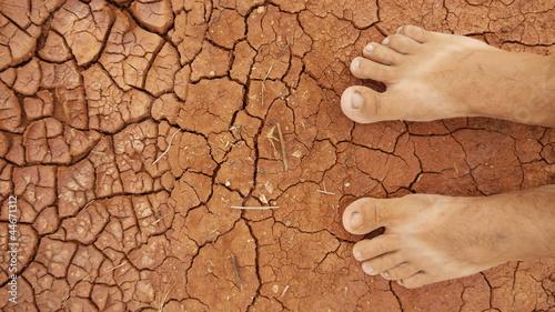 Gleby Desert