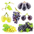 Collection of grapes with leaves, Isolated on white background