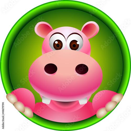 cute hippo head cartoon