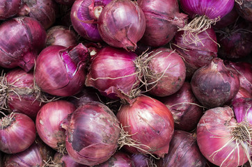 Harvested red onions on display