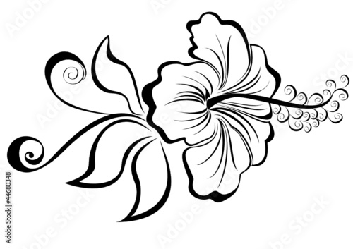 Fleur D Hibiscus Dessin Facile