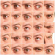 collection of eye expressions
