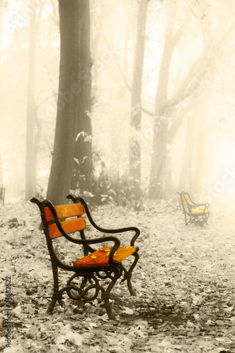 Vintage red benches © Jaroslaw Grudzinski