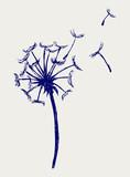Fototapety Blow Dandelion. Doodle style