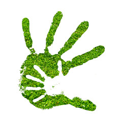 Conceptual hand print made of fresh green grass