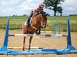 poney qui saute