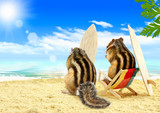 chipmunks serfers on the beach with surf boards